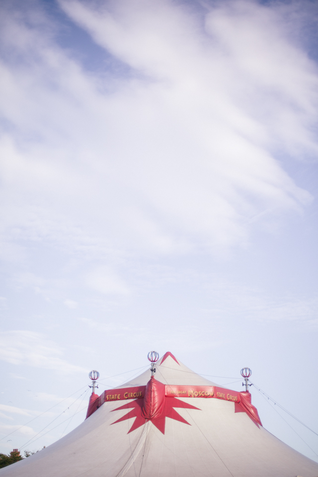 Trip to the circus | nathalie.ie