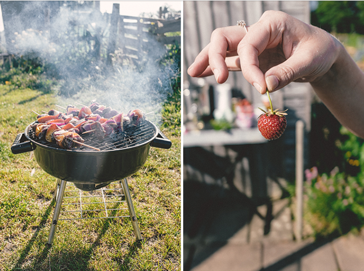 Allotment BBQ | nathalie.ie