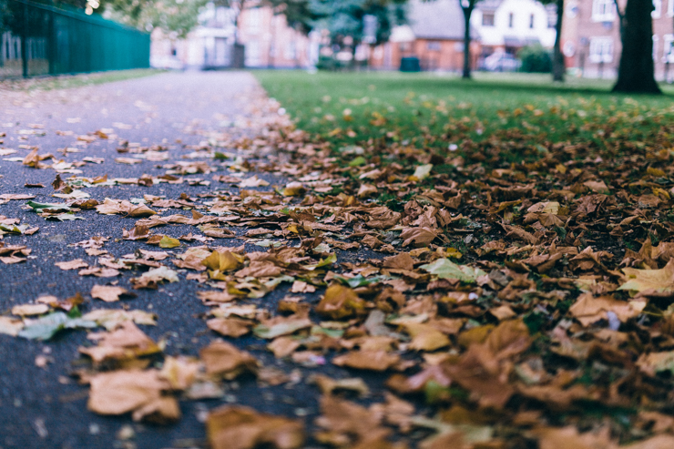 An Autumn Stroll | nathalie.ie